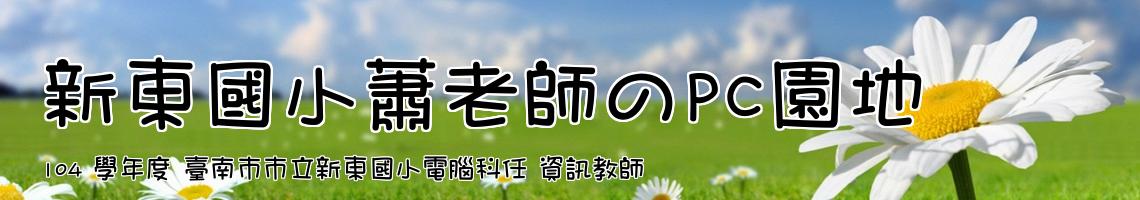 104 學年度 臺南市市立新東國小電腦科任 資訊教師