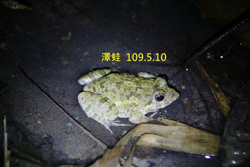 slider image 10