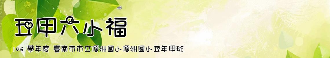 106 學年度 臺南市市立頂洲國小頂洲國小五年甲班
