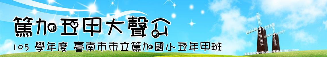 105 學年度 臺南市市立篤加國小五年甲班