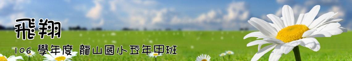 106 學年度 龍山國小五年甲班