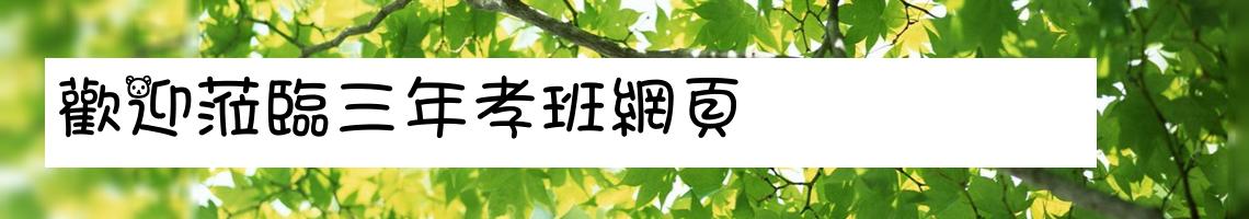 105 學年度 臺南市市立西港國小三年孝班