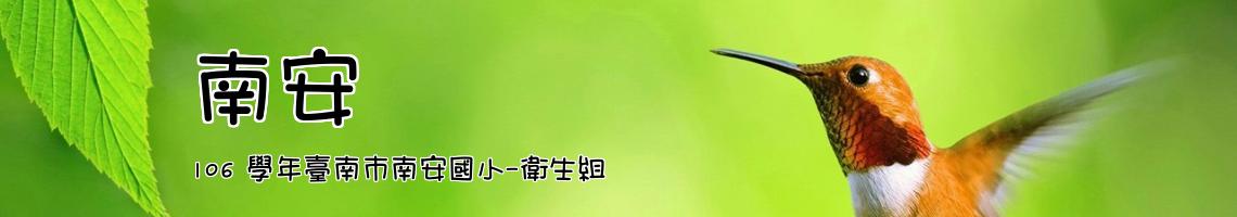 106 學年臺南市南安國小-衛生組