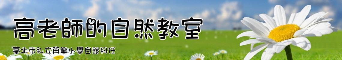 臺北市私立再興小學自然科任