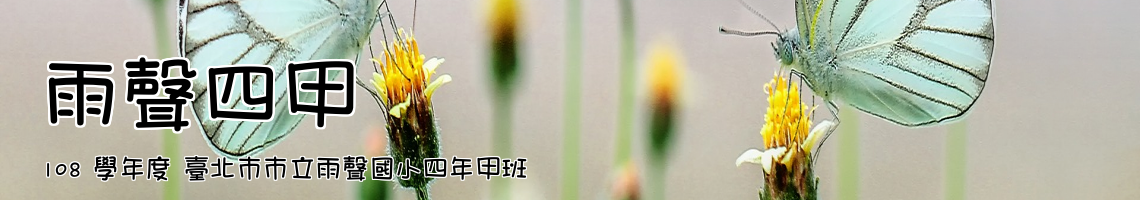 106 學年度 臺北市市立雨聲國小一年乙班
