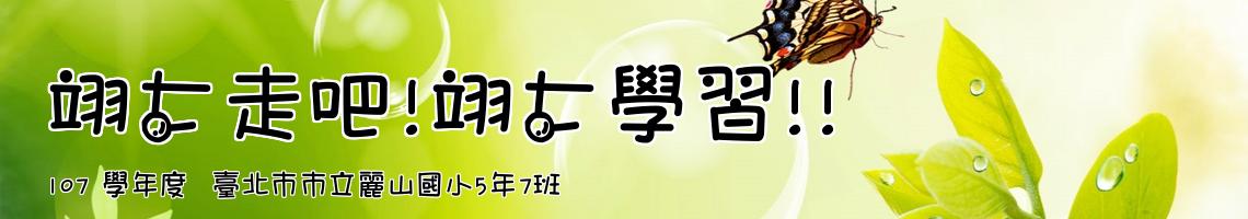 107 學年度  臺北市市立麗山國小5年7班