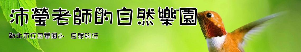 新北市立五華國小  自然科任