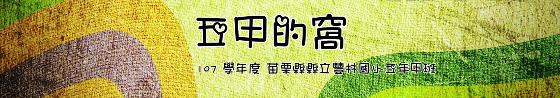 107 學年度 苗栗縣縣立豐林國小五年甲班
