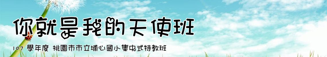107 學年度 桃園市市立埔心國小集中式特教班