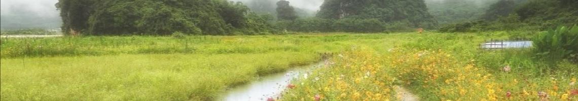 108 學年度 臺北市市立興隆國小六年四班