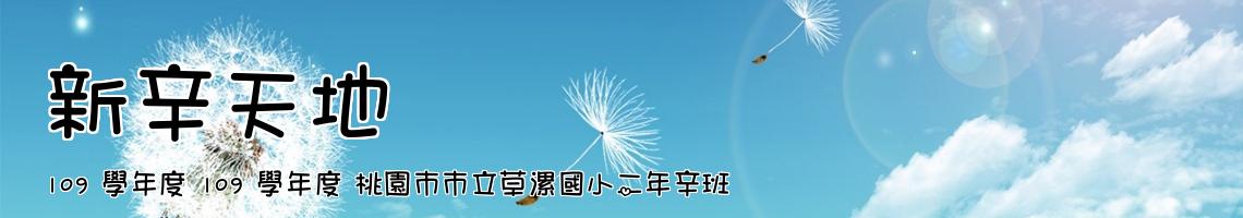 108 學年度 桃園市市立草漯國小一年辛班