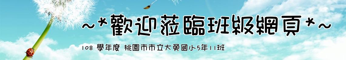 Web Title:108 學年度 桃園市市立大勇國小5年11班
