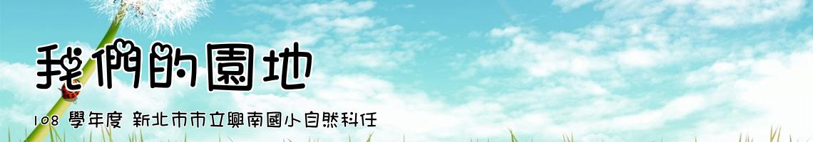 108 學年度 新北市市立興南國小自然科任
