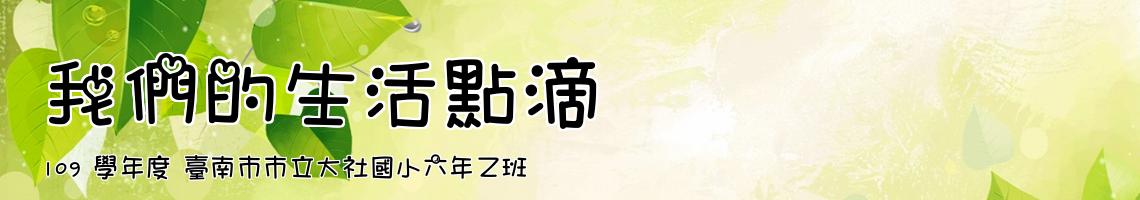 109 學年度 臺南市市立大社國小六年乙班